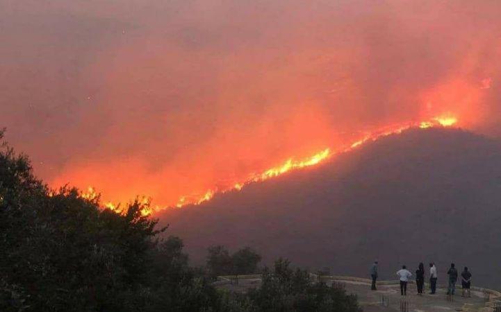 """أسبوع """"ناري"""" في اللاذقية .. إخماد 43 حريقاً وإصابة رئيس فرقة إطفاء"""